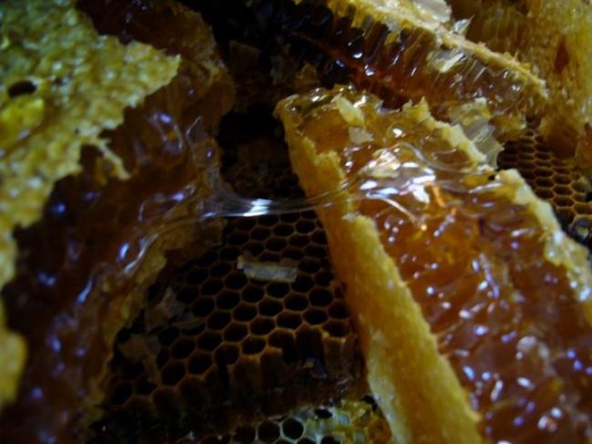 蜂蜜发酵了怎么办?