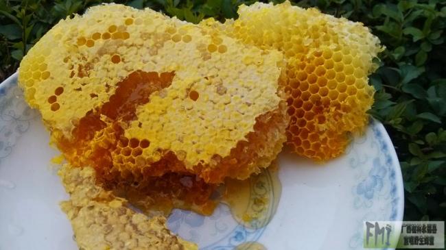 蜂蜜美容方法介绍(原理、作用)