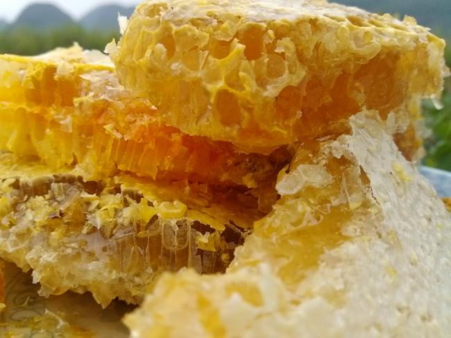 野生蜂巢的药用价值