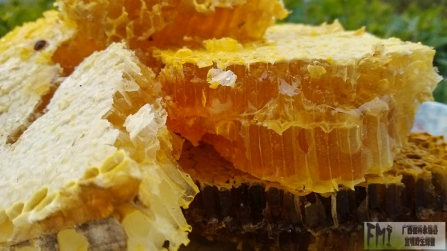 春季雾霾多,蜂蜜萝卜可护肺