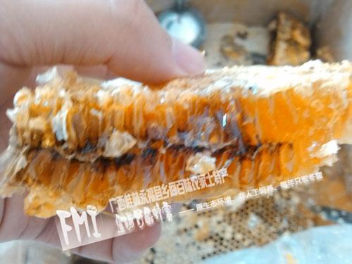 常见的3种蜂蜜生产工艺
