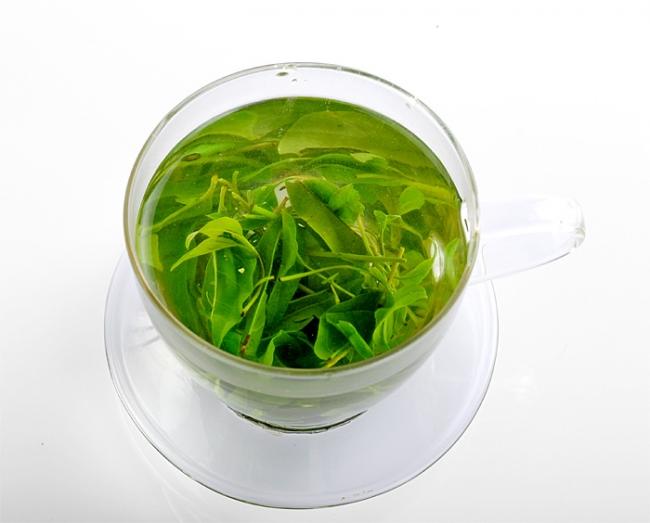 蜂蜜苦丁茶可以有效缓解咽喉炎