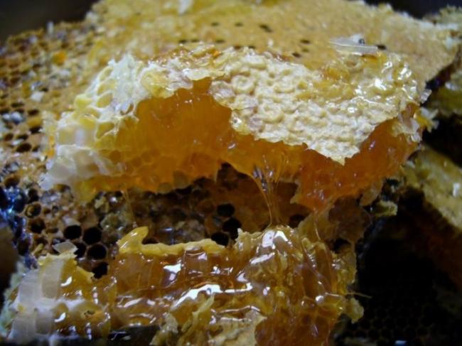 长期服用蜂蜜,养生服用应当适量!