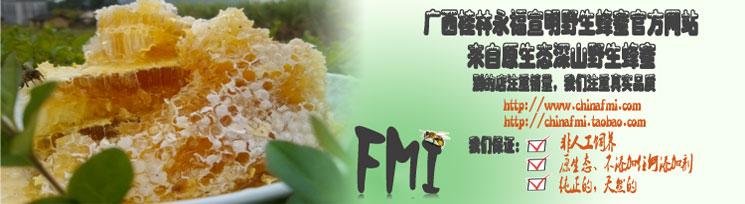 宣明野生蜂蜜