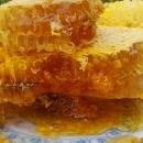 上海天然野生蜂蜜 美容护肤首选品
