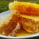 广西百色野生蜂蜜|岩蜂蜜|树洞蜜