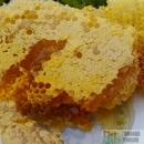 野生土蜂蜜