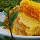 北京天然野生蜂蜜 南方山区农民直销