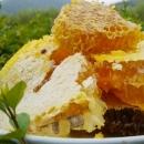浙江杭州|宁波|温州|金华天然野生蜂蜜 南方山区农民直销