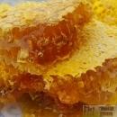 桂林野生土蜂蜜