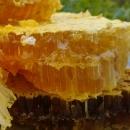 广东广州深圳天然野生蜂蜜 保健美容首选品