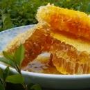 天津天然野生蜂蜜 南方山区农民直销
