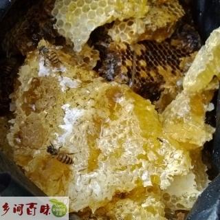 江苏南京|徐州|无锡|苏州天然野生蜂蜜 极品土蜂蜜保健美容首选品